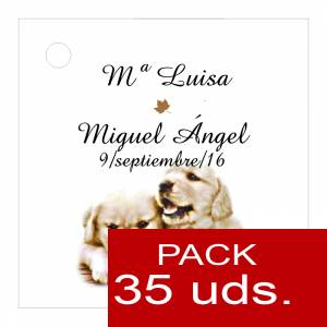 Etiquetas personalizadas - Etiqueta Modelo B16 (Paquete de 35 etiquetas 4x4)